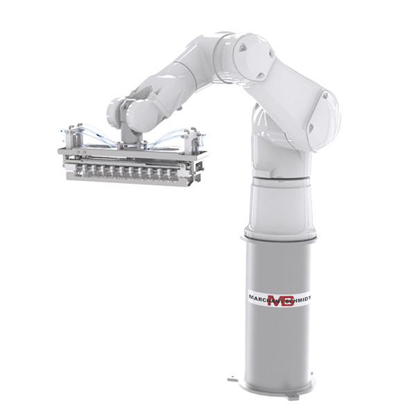 ROBOTIC HANDLING MAIN